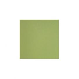 Kiwi 4.8*4.8 см, глянцевый